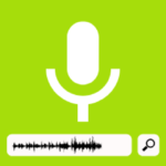 voice search en seo